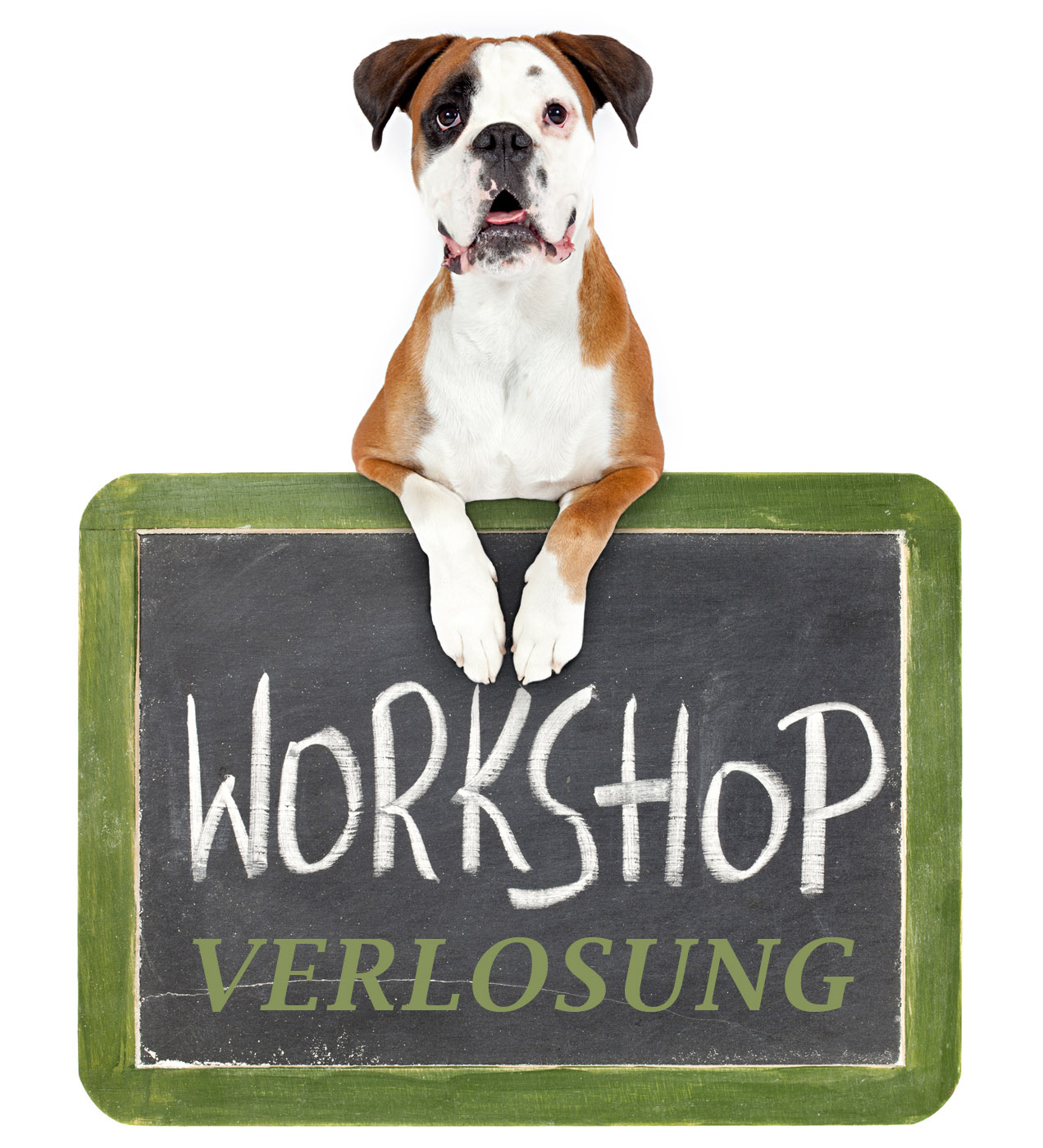 Workshop Tierfotografie Verlosung